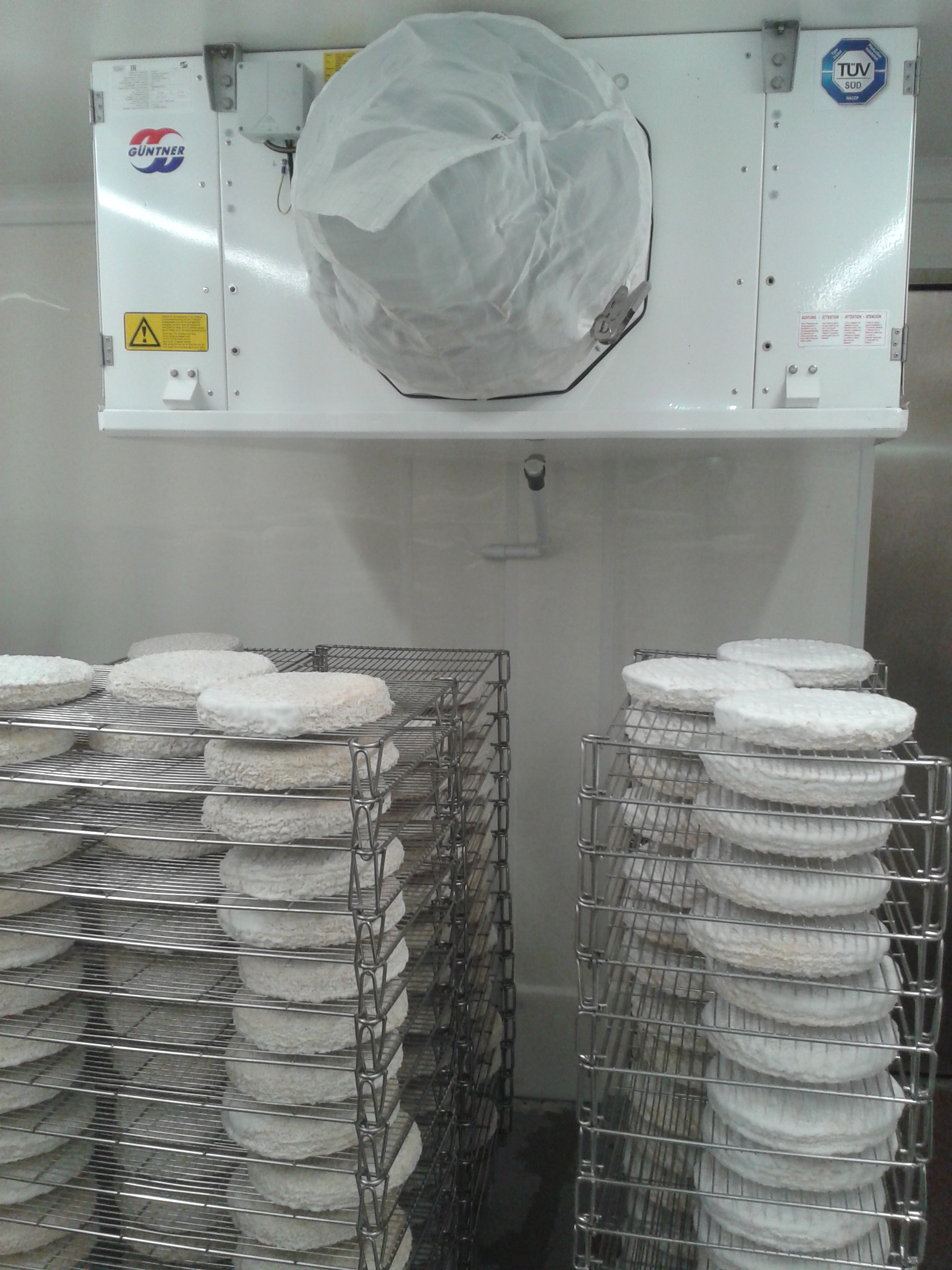 evaporateur chambre froide fromagerie